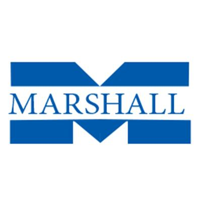 Marshall Sons & Co. (India) Ltd